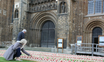 Lincoln Cathedral News - Cathedral garden commemorates the Battle of the Somme