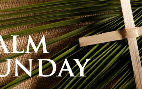 Lincoln Cathedral Events - Palm Sunday